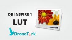 DJI Inspire'nin hakkını verebileceğiniz özel LUT Dosyası