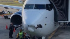 Meksika'da drone yolcu uçağına çarptı